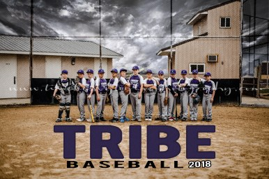 Tribe Group